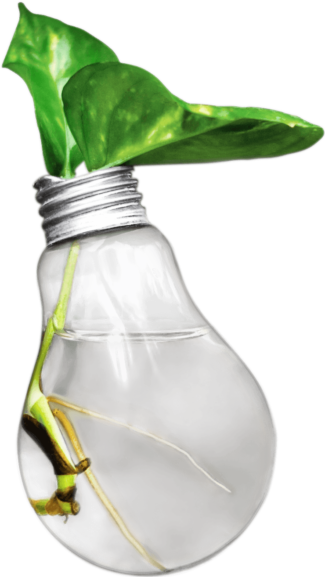 project-celgene-vidaza-human-life-app-image-plant-in-bulb